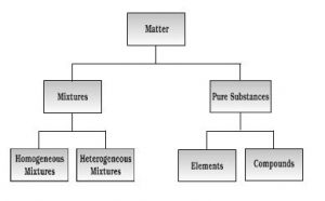 Nature of Matter Classification of matter