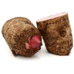 Colocasia Root