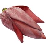 Raw banana flower