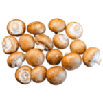 Rugda Mushroom