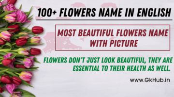 100 flowers Name in English- Names of Flowers